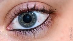mon yeux (neku.chou) Tags: iris macro nikon vert oeil yeux pupille cils neku bleur d5200 valkaio paupier