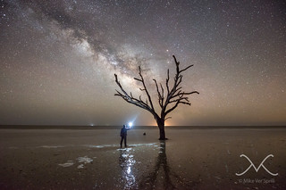 Midnight Explorer at Botany Bay Plantation