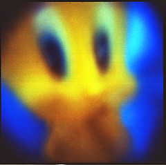 I thought I saw a cat (PiercarloT) Tags: toycamera 120film analogphotography plasticcamera multiexposure expiredfilm holga120n alternativephotography closeuplens alternativecamera kodakektar100 colour120 ektarexpired