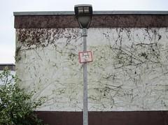 Entrankte Wand / A Wall Less Creepy (bartholmy) Tags: abstract sign facade hydrant streetlamp minimal schild minimalism creepers bungalow fassade abstrakt ranken baw badenwrtemberg minimalistisch minimalismus kletterpflanzen strasenlaterne baltmannsweiler hohengehren schildfrstraseneinbauten