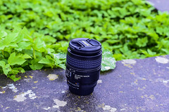 My Micro Lens/Analog Lens are tough (azyef94) Tags: macro analog lens nikon micro nikkor nikonlens nikonphotography analoglens