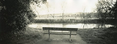 Bench (carwyn2) Tags: film sepia bench print salisbury shen contact wiltshire ilford fp4 largeformat hao schneider selenium splittoned pyrocat 4x10 angulon wylye 121mm lodima