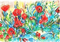 AMAPOLAS SILVESTRES EN LA CIUDAD (GARGABLE) Tags: madrid flores fleurs sketch silvestre apuntes amapolas hierbas urbansketchers uskspain gargable angelbeltrn