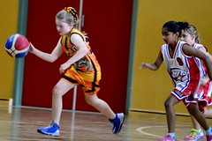 Basketball (30/04/2016) - Photography by Vlade Ivanovi (PhotoArt Gallery VIDIM) Tags: pictures life friends summer people white game milan art love basketball sport yellow digital season children fun photography parents hall nikon photos 10 crowd joy memories under daughters dana australia melbourne competition indoor social skills images deke professional grandchildren grandparents passion vlade spectators fitness vera beograd comets waverley sons nane venues srbija slavica 2016 iva milo milosh goca jugoslavija koarka sloveni ivot steva fotografija dushan duan roditelji uspomene juniori kruevac putokazi tragovi photoartvlade dia 30042016