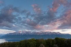 Lac Lman (Jrme Farine) Tags: mountain lake lac lman chablais