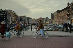 (J N Photography) Tags: street urban holland water amsterdam bike canal europe streetphotography streetphoto paysbas vlo urbain hollande canalhouse northholland urbanpeople peopleinthestreet lifescene dt1650mmf28ssm jeremynuyten