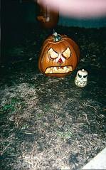 Jack-O-Lantern & a Jack-o-gourd (scrap.rabbit) Tags: jackolantern pumpkins carvedpumpkin scraprabbit