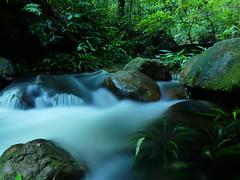 Stream at Rainforest of Borneo (nabeborneo68) Tags: longexposure waterfall rainforest stream sarawak borneo tropical kuching