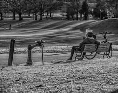 Sunny afternoon (PhotographyIsTheMuse) Tags: park old atlanta blackandwhite stilllife sunlight man monochrome grass bicycle cycling sitting cyclist view lawn naturallight foliage urbannature parkbench picturesque piedmontpark sunnyday nofilter historicdistrict waterfountains distantview tamron70200mm28 nikond750 photographyisthemuse