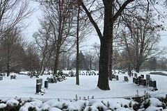 Cemetery By the Lake (AntyDiluvian) Tags: park lake snow cemetery boston pond massachusetts headstone gravestone wakefield quannapowitt