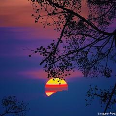 Beauty is whatever gives joy. ~ Edna St. Vincent Millay (gusdiaz) Tags: sea summer sun sol beach beautiful beauty sunrise mar key florida miami joy playa arena biscayne alborada vsco vscocam
