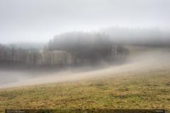 Pastviny (jirka.zapalka) Tags: morning trees winter fog landscape czech pasture rano krajina beskydy mlha leskovec
