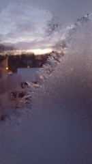 Frosty Morning (Mamluke) Tags: morning winter light cold ice home window glass minnesota frost crystals hiver january stpaul frosty invierno icy pane kalt inverno fro freddo froid crystalline mamluke koude