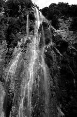 Waterfall Milford Sound (christiane.grosskopf) Tags: newzealand blackandwhite blackwhite waterfall wasserfall milfordsound schwarzweiss neuseeland nikond7000