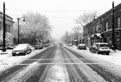 Snow Day (P.Woolley) Tags: winter snow storm weather nikon massachusetts snowstorm mass norwood norwoodma nikond7000 february5th2016