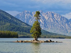 Leigh Lake, Grand Teton National Park (wldrns) Tags: hiking grandtetonnationalpark leighlake leighlaketrail