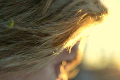 turn toward the sun (joy.jordan) Tags: sunset woman selfportrait blur bokeh flare 52by52 shootyoursubjectsfrombehind
