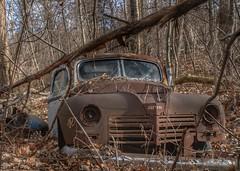 DSC08569.ARW-01 (juice95m3) Tags: abandoned rust vintagecar automobile junkyard oldcars classiccars