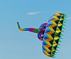 Kite Festival, Treasure Island, Florida (1 of 5)