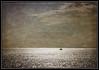 ...infinity... (kurtwolf303) Tags: seagull möwe segelboot boat sea ocean meer water wasser horizon horizont olympusem1 omd microfourthirds micro43 teneriffa tenerife spain spanien islascanarias kanaren canaryislands unlimitedphotos kurtwolf303 systemcamera españa europe 250v10f seascape 500v20f texture textur ebenen topf25 topf50 greatphotographers 750views layers 900views topf75 1000v40f 1500v60f topf100 2500views 3000views 6000views 7000views topf150 himmel sky 8000views 9000views fotorahmen frame