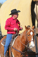 Cowboy Checks on the Wagon (wyojones) Tags: horse man hat wagon glasses texas houston parade cowboyhat saddle trailride houstonlivestockshowandrodeo saddlehorn wyojones houstonlivestockandrodeoparade