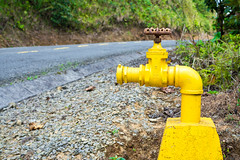 Pipe on the Road (AzazzelPhotography) Tags: road trip travel mountain green nature yellow nikon rustic pipe valve travelphotography nikonphotography