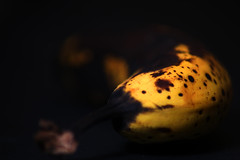 Studio banana (gina.nicole.tesloff) Tags: light food brown black color colour detail macro art texture rotting yellow fruit contrast canon dark studio found lights design university pattern yum natural bright sweet fine spots exotic picked colourful delicate dying depth yuk enchanting