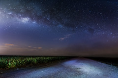 Roads above and below (bdrc) Tags: road blue light field night painting stars landscape town long exposure slow farm sony tokina pineapple malaysia plantation shutter agriculture ultrawide f28 johor milkyway simpang kluang 1116mm a6000 renggam asdgraphy
