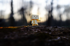 teeny tiny danbo (buboplague) Tags: toys mini figure danbo danboard