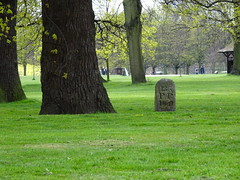 Kensington garden (tsilah) Tags: uk london grass sunny kensington 13 graden