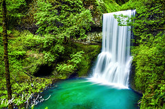 Lower South Fall (Nakul Kataria) Tags: park blue trees wallpaper west fern sexy green fall nature water beautiful oregon creek forest silver flow volcano waterfall moving spring rocks long exposure state pacific south north silk falls historic evergreen valley porn hd majestic volcanic marvelous willamette conifer cacades