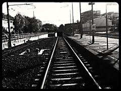 Binari... (albertovallini) Tags: modena stazione treno binari partenza ritorno arrivo andata