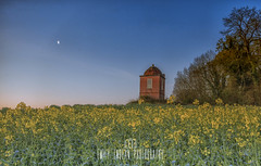 The Philosophers Tower, Wimborne St Giles, Dorset. (Emily_Endean_Photography) Tags: flowers sun tower field architecture barn sunrise landscape countryside spring seed rape structure dorset sprig sixpenny