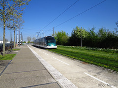 Tram (d.martins89) Tags: bus tram strasbourg transports estrasburgo cts