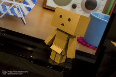 winter_of_Danbo_modeling_Festival-107 () Tags: toy hobby figure  kotobukiya danbo