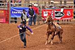 Calf Roping #2 (The Old Texan) Tags: texas rodeo calfroping