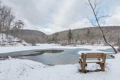 Happy Snowy Bench Monday! (repete7 (I'm really back this time)) Tags: winter usa snow canon landscape virginia frozen hbm pandapaspond jeffersonnationalforest canon1585 canon70d