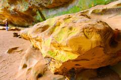 Stone (Eridony (Instagram: eridony_prime)) Tags: statepark park ohio nature hockinghills hockingcounty hockinghillsstatepark bentontownship
