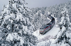 Looks like Christmas… (Moffat Road) Tags: railroad trees train rockies colorado 5 snowstorm crescent amtrak co locomotive cz ge frontrange no5 flocked passengertrain californiazephyr p42dc formerriogrande upmoffattunnelsubdivision
