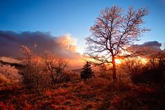 Big Bear Sunset (Leniel Velazquez) Tags: sunset mountain landscape paradise goldenhour bigbear