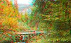 Triberg Waterfalls in anaglyph (Alexander Savin) Tags: forest germany waterfall stereoscopic 3d anaglyph stereo stereography triberg stereo3d