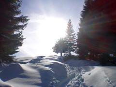 Am Zwiesel (bookhouse boy) Tags: schnee winter snow mountains alps berge alpen blomberg 2016 badtölz zwiesel bayerischevoralpen 6februar2016