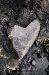 Heart Of Stone (mmyyrylainen) Tags: holiday nature landscape volcano nationalpark nikon scenery tenerife volcanic teide canaries canaryislands 2016 mountteide d7000