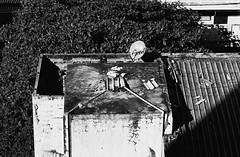 Satellite Station (jcbkk1956) Tags: blackandwhite film rooftop analog 35mm thailand mono tv nikon dish bangkok satellite manual nikkor ilford nikkormat thonglo