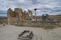imgp3904 (Mr. Pi) Tags: nest ruin morocco volubilis archaeologicalsite