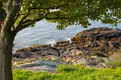 Waves Crashing, Fort Sewall (River Bliss Photography) Tags: sea marblehead northshore