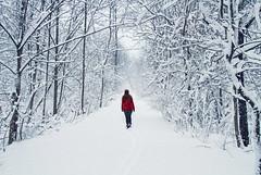 Pristine (Matt Champlin) Tags: life snow cold nature canon quiet peace hiking snowy walk snowstorm calming peaceful calm hike cny wife upstatenewyork chilly stace idyllic 2016 womaninred skaneateles redinsnow
