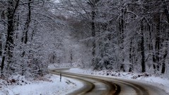 SSSSS (pat.thom974) Tags: road trees winter white snow forest