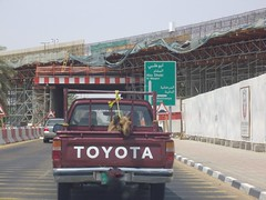 Young Camel in pickup truck (Patrissimo2017) Tags: