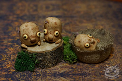 (rioky_angel) Tags: cute monster creativity toys potatoes furry handmade ooak fluffy vegetable fantasy clay artdoll creature arttoy toymaker polimerclay riokycreatures